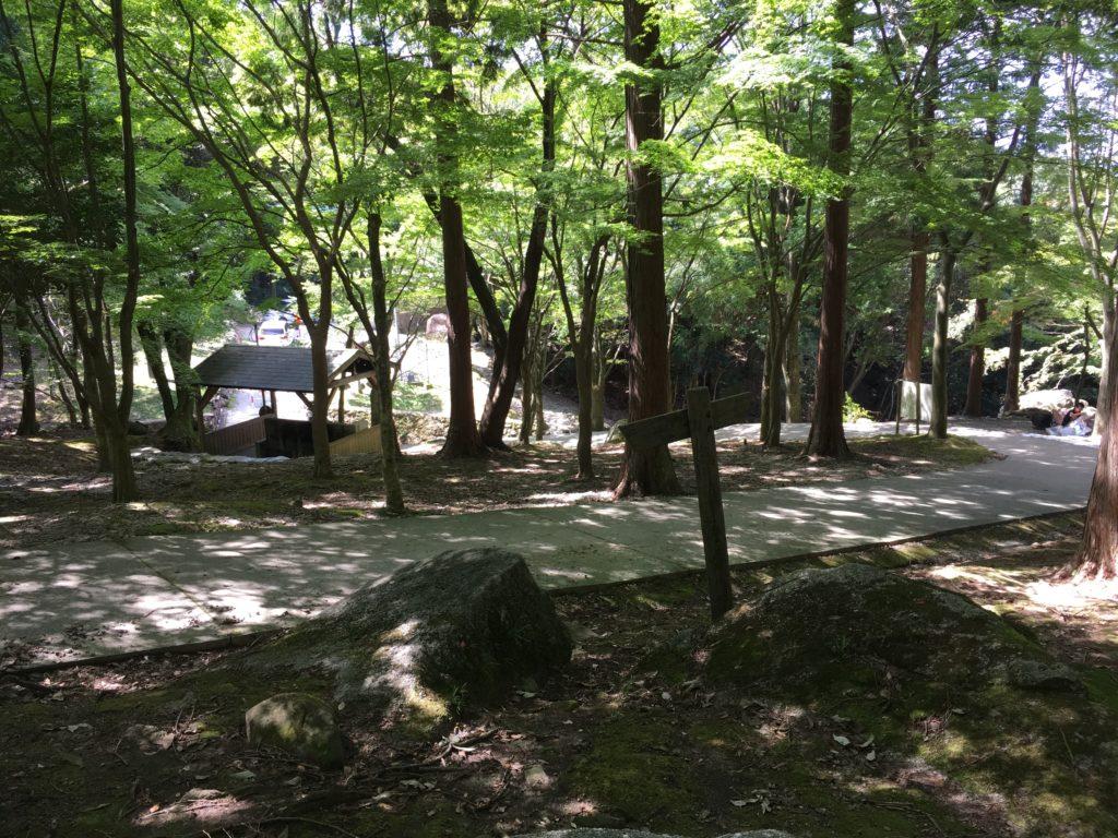 一本松公園(昭和の森)キャンプ場